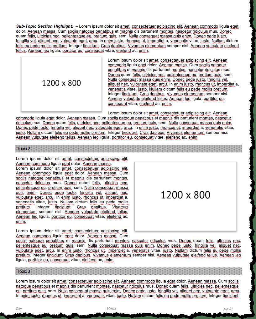 generic executive handout template
